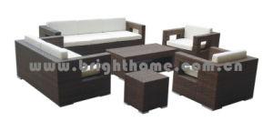 Outdoor Rattan/ Wicker Garden Furniture (BP-810) pictures & photos