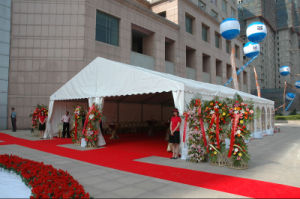 Wedding Tent/Marquee Tianji01-97