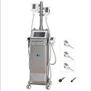 Cryo Lipolysis Laser Slimming Machine with LCD Touch Screen (TP-9) pictures & photos