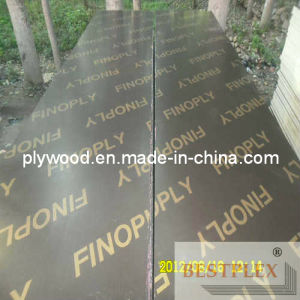 610X2500mm Film Faced Plywood for Middle-East Market pictures & photos