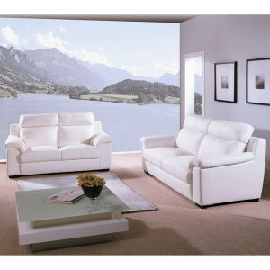 Living Room Leisure Sofa, Leather Sofa Set (WD-9741)