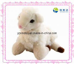 Plush White Ell Sheep Baby Toy pictures & photos