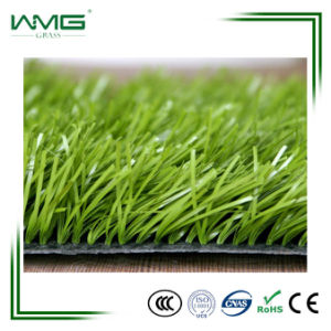 50mm/Gymnastics Area Decoration/Artificial Grass/8 Years Guarantee pictures & photos