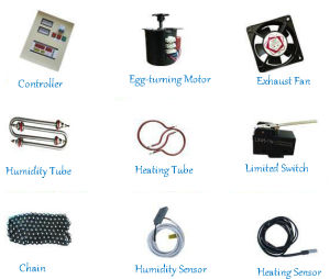 Cheap Price Ostrich Egg Incubator Egg Hatching Machine pictures & photos