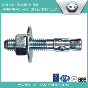 Stainless Steel 304/316 Wedge Anchor Bolt pictures & photos