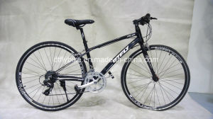 700c Road Bicycle, Racing Bike, Alloy Frame Road Bike pictures & photos