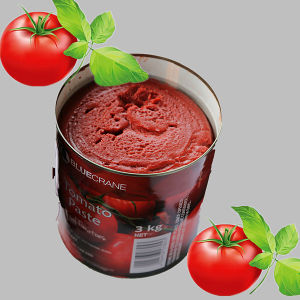 A10 Tintomato Paste (Double Concentrated) pictures & photos