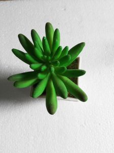 Artificial Plants and Flowers of Succulent Plant Gu-Sc024 pictures & photos