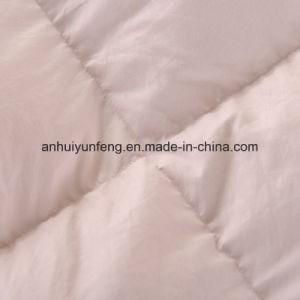 Patchwork Baffle Design Goose Down Comforter pictures & photos