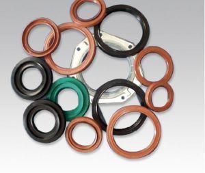 Valve Stem FPM Tc Oil Seal for Auto Parts pictures & photos