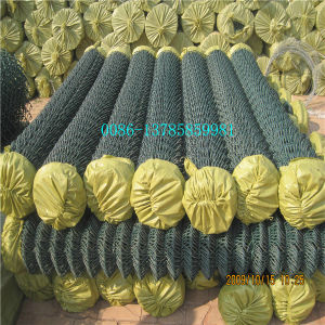 Peaceful Hot Sale PVC Coated Chain Link Fence pictures & photos