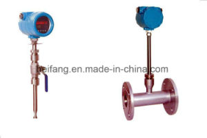 Thermal Gas Mass Flowmeter pictures & photos