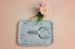 Bamboo Fiber Tableware Tray with Printed (BC-TP1007) pictures & photos