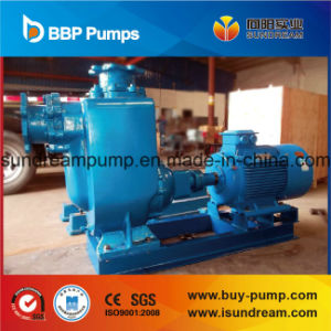 Portable Waste and Flood Water Pumps pictures & photos