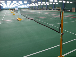 PVC Flooring for Indoor Badminton, Sports Flooring, 402 pictures & photos