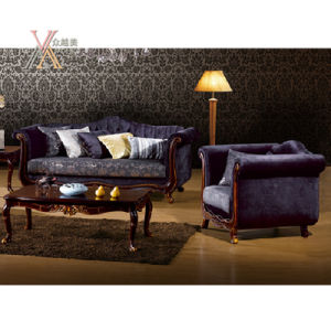 Antique European Fabric Sofa Set (NCS30) pictures & photos