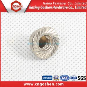 (DIN6923) Carbon Steel Flange Lock Nut Serrate pictures & photos