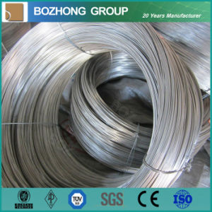 0.8mm 304L Surface Colouration Stainless Steel Wire pictures & photos
