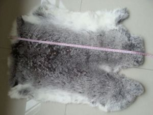 Real Natural Grey Rex Rabbit Fur Skins for Sale/ pictures & photos