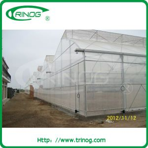 Multi Span Plastic Film Greenhouse with gutter for Flowers pictures & photos