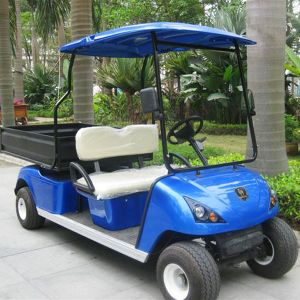2 Seats Electric Golf Shipping Cart with Cargo Box (DU-G4L) pictures & photos