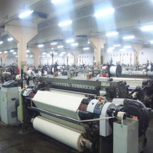 Itema (Shanghai) K88 Used Rapier Loom for Direction Production pictures & photos