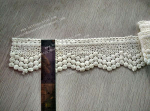 New Style Polyester Lace pictures & photos