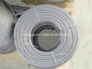 Galvanized Steel Wire Rope /Wire Rope /Steel Wire Rope pictures & photos
