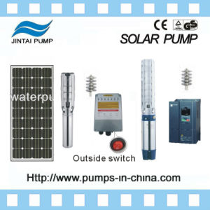 Solar Water Pump for Agriculture, Solar Powered Irrigation Water Pump pictures & photos