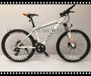 "Top Sales Bicycle 20""-26""/21 Speed Colorful Mountain Bike MTB Bicycle with Double Disc Brake pictures & photos"