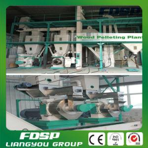 Rice Husk Pellet Plant Paper Sludge Pellet Plant Manufacturer pictures & photos