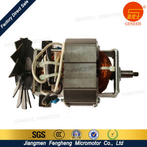 Gold Supplier Juice Extractor Motor pictures & photos
