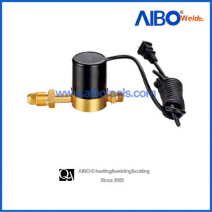 Heater for CO2 Pressure Regulator with Electric Wire (2W16-1035) pictures & photos