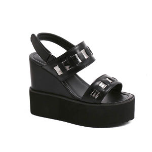 High Wedge Heel Shoes Fashion Lady Sandal (TM-win421)