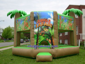 Amusement Inflatable Bouncer for School and Church Festivals (A157) pictures & photos