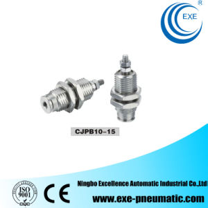 Cjp Series Needle Pneumatic Cylinder Cjpb10*5 pictures & photos