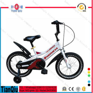Fashion Design 12 Inch Wheel Bike Children Bicycle Small Kids Bike on Sale Baby Mini Bike pictures & photos