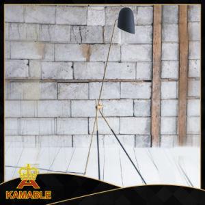 Modern Decorative Antique Black Floor Light (KAF6059) pictures & photos