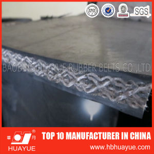 Professional Suppliers Fire Resistant Pvg/PVC Conveyor Belt pictures & photos
