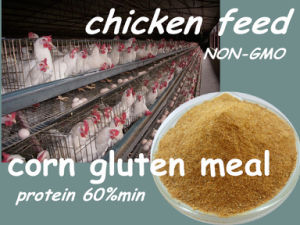 Chicken Feed- Corn Gluten Meal for Feed Protein 60% pictures & photos
