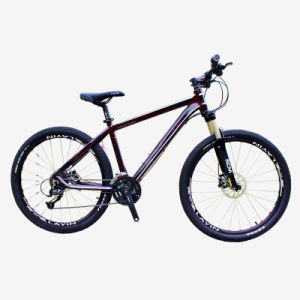 Best Mountain Bike with Disc Brake pictures & photos