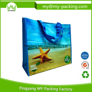 Cheap Promotional Printed Shopping Bag pictures & photos