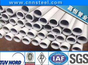 SUS321 Stainless Steel Tube (SUS304 SUS 321 SUS316 SUS316L SUS310S) pictures & photos