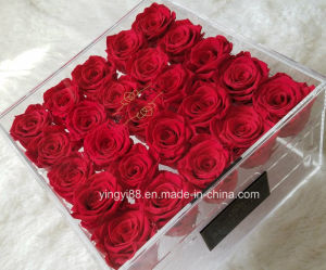 2018 New Style Acrylic Transparent Rose Box pictures & photos