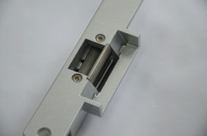 12V Ce Certified Standard Electric Door Striker pictures & photos