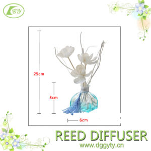 OEM 100ml Boutique Hotel Seven Days Inn, Home, Office Aroma Reed Diffuser Gift Scents, Accpet Custom Deisn and Fragrance Custom pictures & photos