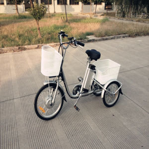 Chinese Cheap Price Adults Electric Cargo Tricycle Rseb-704 pictures & photos