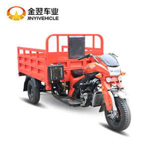 200cc Cargo Shipment Trike Cargo Tricycle pictures & photos