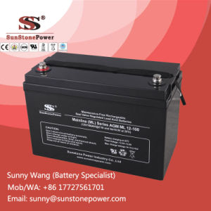 Maintenance Free 12V 100ah VRLA Sealed Lead Aicd UPS Battery pictures & photos