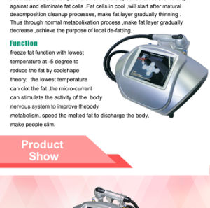 Portable Freezed Fat Beauty Equipment (ETG17) pictures & photos
